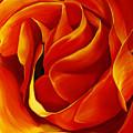 Sabrina's Rose by Julie Pflanzer
