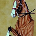 Saddlebred by Lilly King