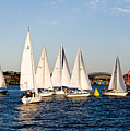 Sailboat Racing by Tom Dowd