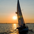 Sailing Into The Sunset by Tom Dowd