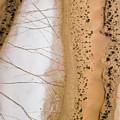 Salt Pans Deep In The Kalahari With 4x4 by Michael Fay