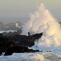 Salt Point Wave by Bob Christopher