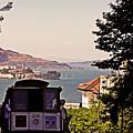 San Francisco Treat by Ty Helbach