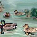 Sanctuary For Ducks by Val Stokes