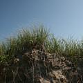 Sand Dunes IIi by Jeff Porter