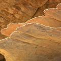 Sandstone Fins by Bob Christopher