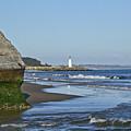 Santa Cruz Coastline - California by Brendan Reals
