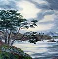 Santa Cruz Cypress Tree by Laura Iverson