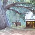 Savannas Backwoods by Meredith Jones