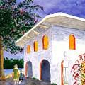 Sayilita Casa by Buster Dight
