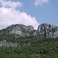 Seneca Rocks by Joshua Bales