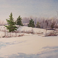 Shadows On Snow In The Canadian Shield  by Debbie Homewood