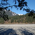 Shadows On The Coquihalla River  by J D Banks