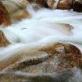 Shannon Falls by Barbara  White