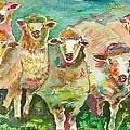 Sheep Marketing Board by Naomi Gerrard