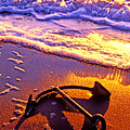 Ships Anchor On Beach by Garry Gay