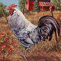 Silver Laced Rock Rooster by Richard De Wolfe