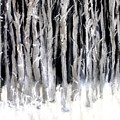 Silver Trees by Michela Akers