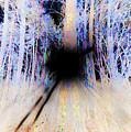 Singularity by Jonathan Ellis Keys