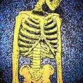 Skeletoon by Mark Cheney