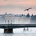 Skeppsholmsbron, Stockholm by Hannes Runelöf