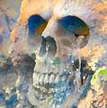 Skull by Danielle Stephenson
