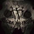 Skull by Dave Edens