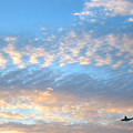 Sky Plane by Gerard Yates