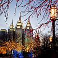 Slc Temple Lights Lamp by La Rae  Roberts