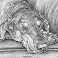 Sleeping Beauty - Doberman Pinscher Dog Art Print by Kelli Swan