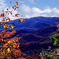 Smoky Mountain Autumn View by Nancy Mueller