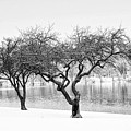 Snow Along The Schuylkill River by Bill Cannon