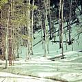 Snow Day by Brenton Woodruff