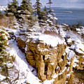 Snow In The Park Acadia Maine by Elaine Plesser