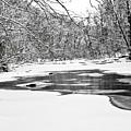 Snow On The Stream by Robin Lynne Schwind