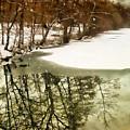 Snow Pond by Jessica Jenney