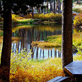 Solitude At Donner Pass by S Lynn Lehman