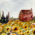 Sonoma Hillside Series Sunflowers by K Hoover