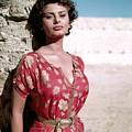 Sophia Loren, 1950s by Everett