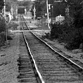 Southern Junction by Elizabeth Hart