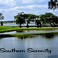 Southern Serenity by Gary Wonning