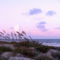 Southern Shoreline by Al Powell Photography USA