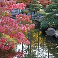 Sparkling Autumn Reflection by Carol Groenen