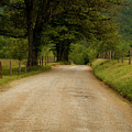 Sparks Lane - Cades Cove by Andrew Soundarajan