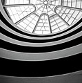 Spiral Staircase And Ceiling Inside The Guggenheim by Sami Sarkis