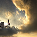 Spitfire by Meirion Matthias