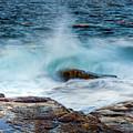 Splash by Susan Cole Kelly
