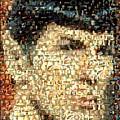 Spock Star Trek Mosaic by Paul Van Scott