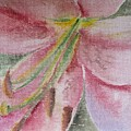 Spring Lily by Kathy Mitchell
