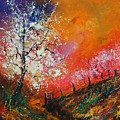 Spring Today by Pol Ledent